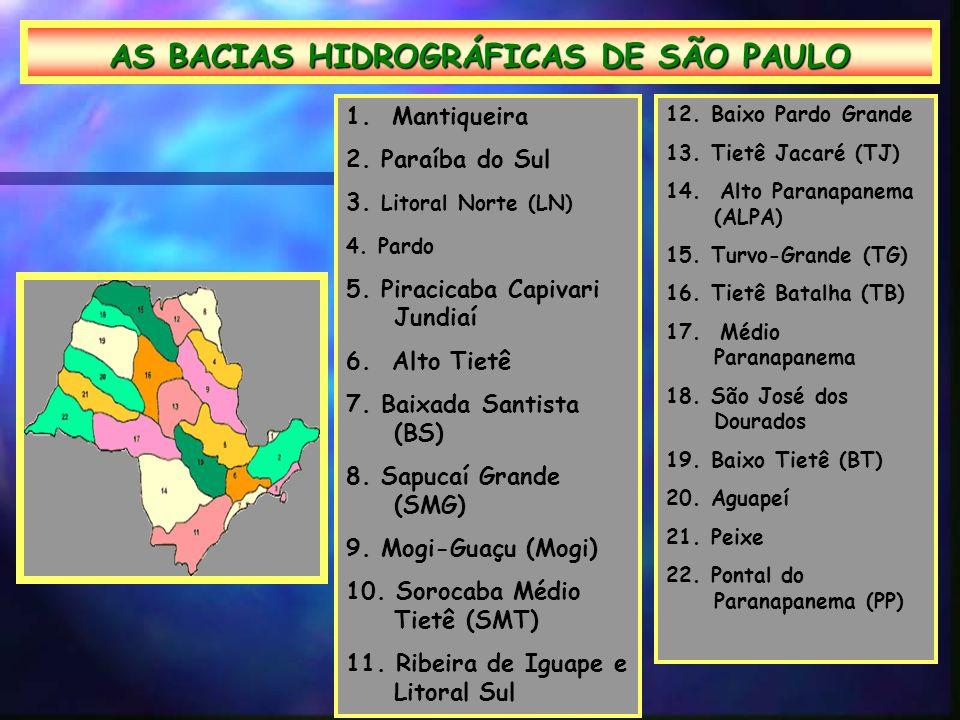 AS BACIAS HIDROGRÁFICAS DE SÃO PAULO