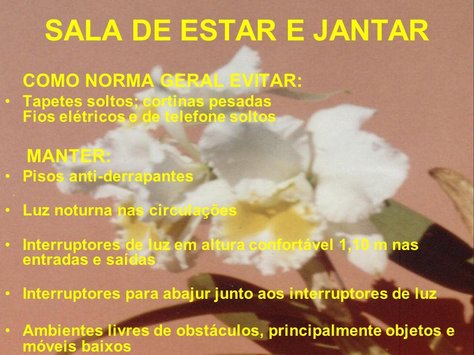 SALA DE ESTAR E JANTAR COMO NORMA GERAL EVITAR: Tapetes soltos; cortinas pesadas Fios elétricos e de telefone soltos.