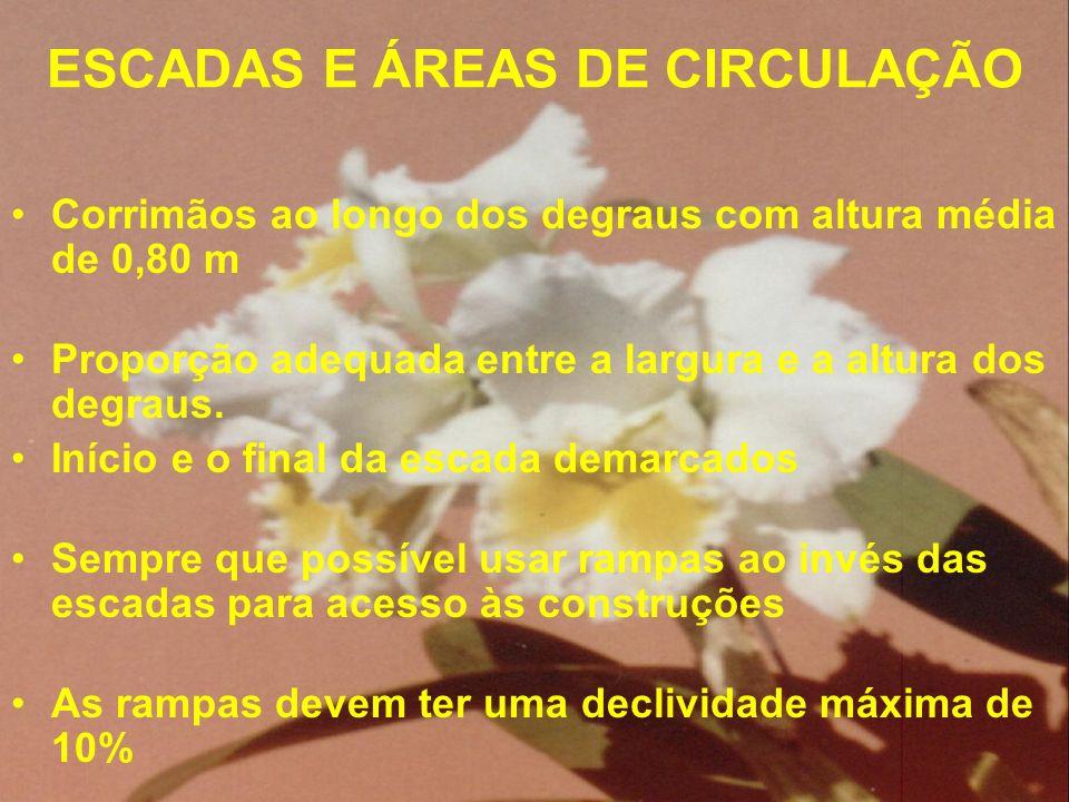 ESCADAS E ÁREAS DE CIRCULAÇÃO