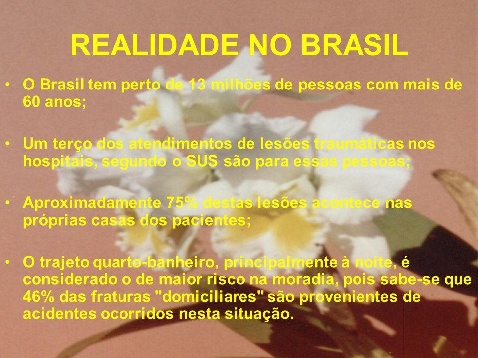 REALIDADE NO BRASIL O Brasil tem perto de 13 milhões de pessoas com mais de 60 anos;