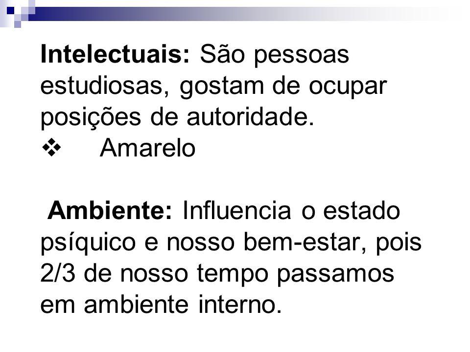 Intelectuais: São pessoas estudiosas, gostam de ocupar posições de autoridade.