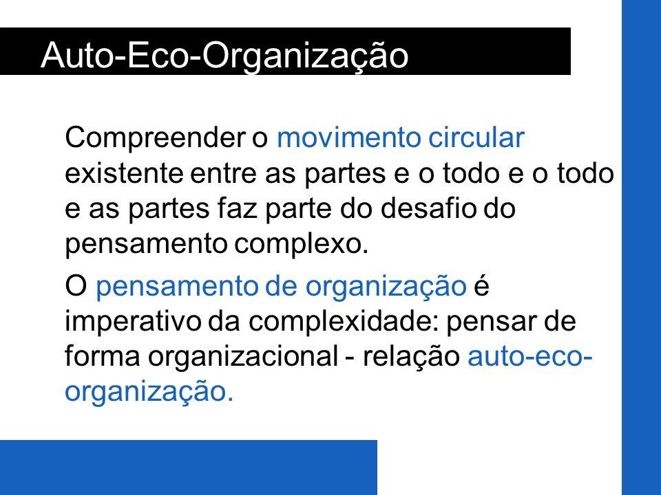 Auto-Eco-Organização