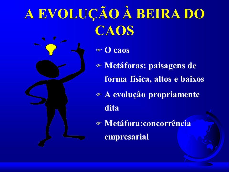 A EVOLUÇÃO À BEIRA DO CAOS