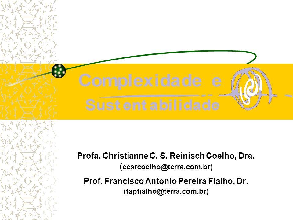 Profa. Christianne C. S. Reinisch Coelho, Dra.