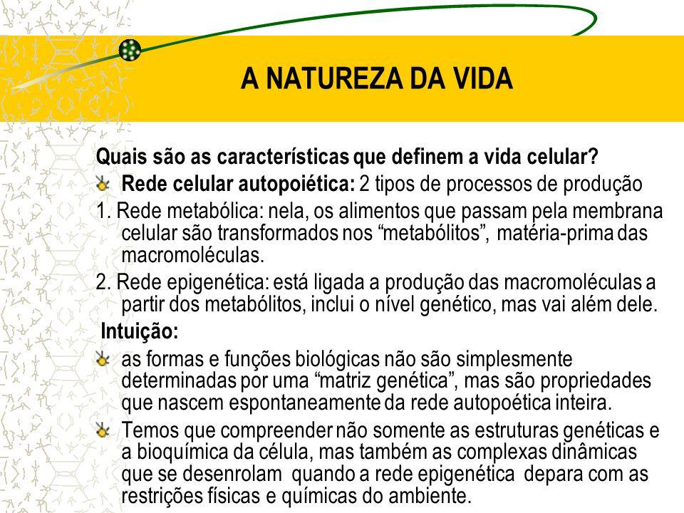 A NATUREZA DA VIDA Quais são as características que definem a vida celular Rede celular autopoiética: 2 tipos de processos de produção.