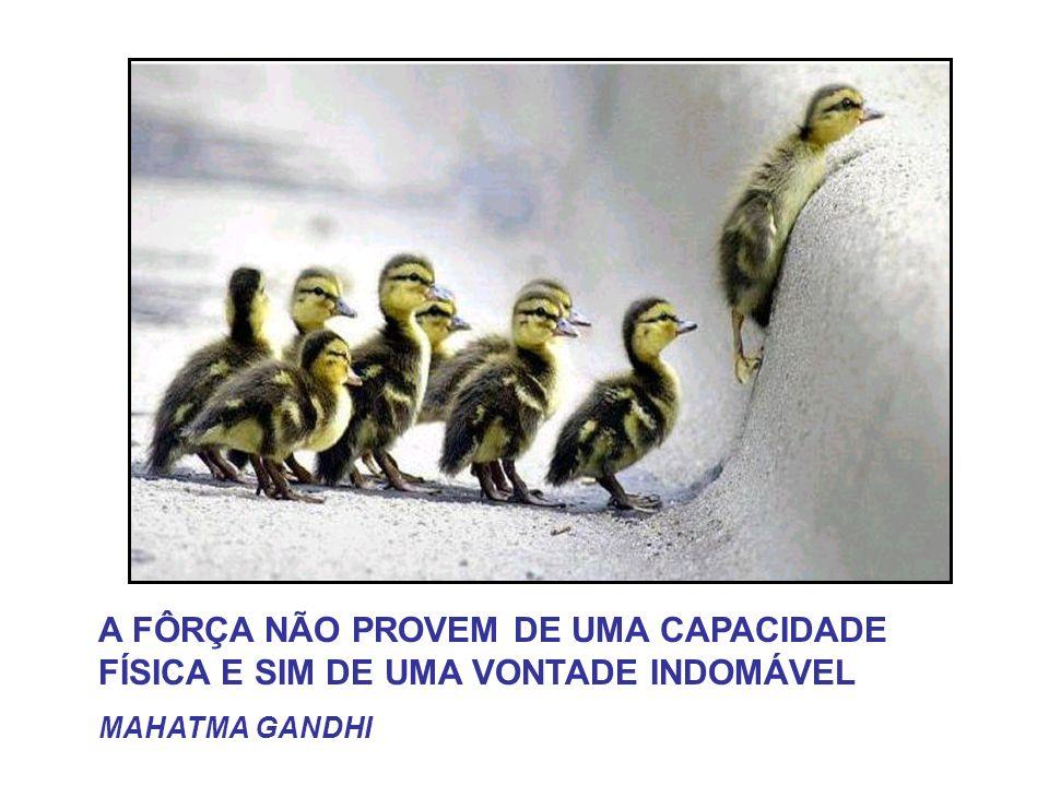 A FÔRÇA NÃO PROVEM DE UMA CAPACIDADE FÍSICA E SIM DE UMA VONTADE INDOMÁVEL