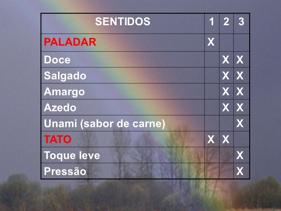 SENTIDOS 1 2 3 PALADAR X Doce Salgado Amargo Azedo Unami (sabor de carne) TATO Toque leve Pressão