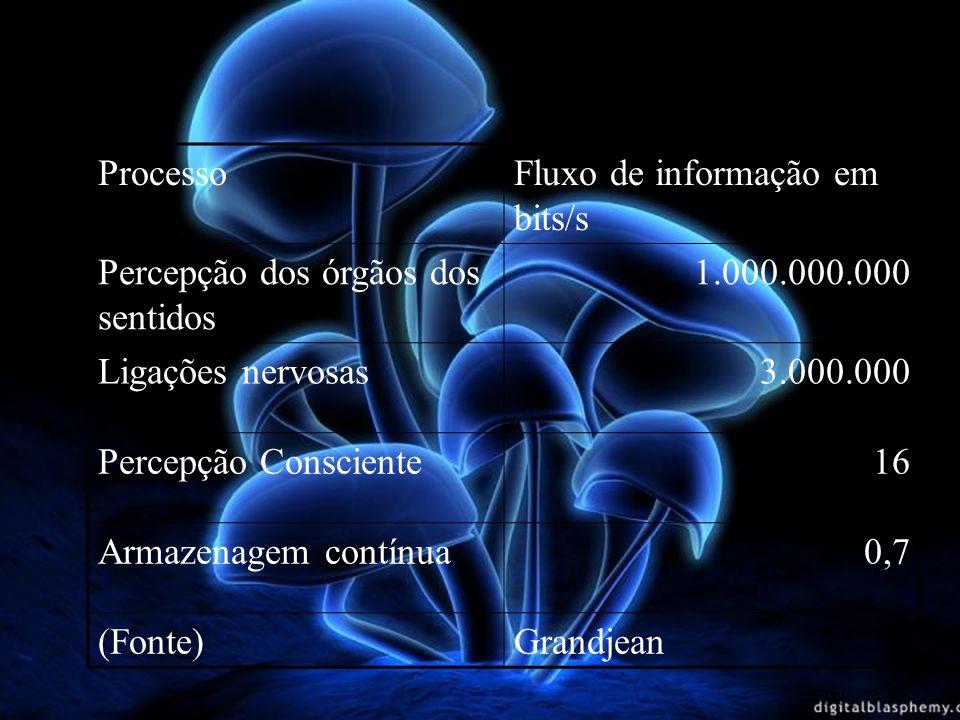 Processo Fluxo de informação em bits/s. Percepção dos órgãos dos sentidos. 1.000.000.000. Ligações nervosas.