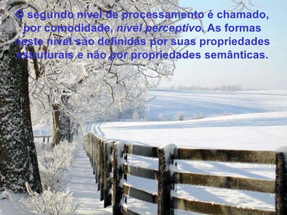 O segundo nível de processamento é chamado, por comodidade, nível perceptivo.