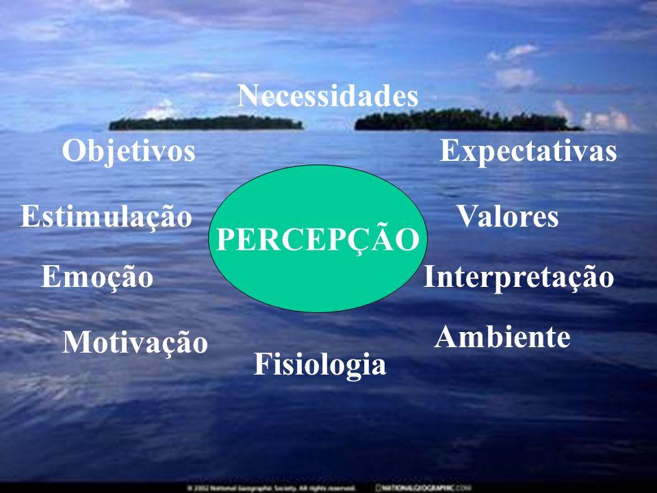NecessidadesObjetivos. Expectativas. PERCEPÇÃO. Estimulação. Valores. Emoção. Interpretação. Ambiente.