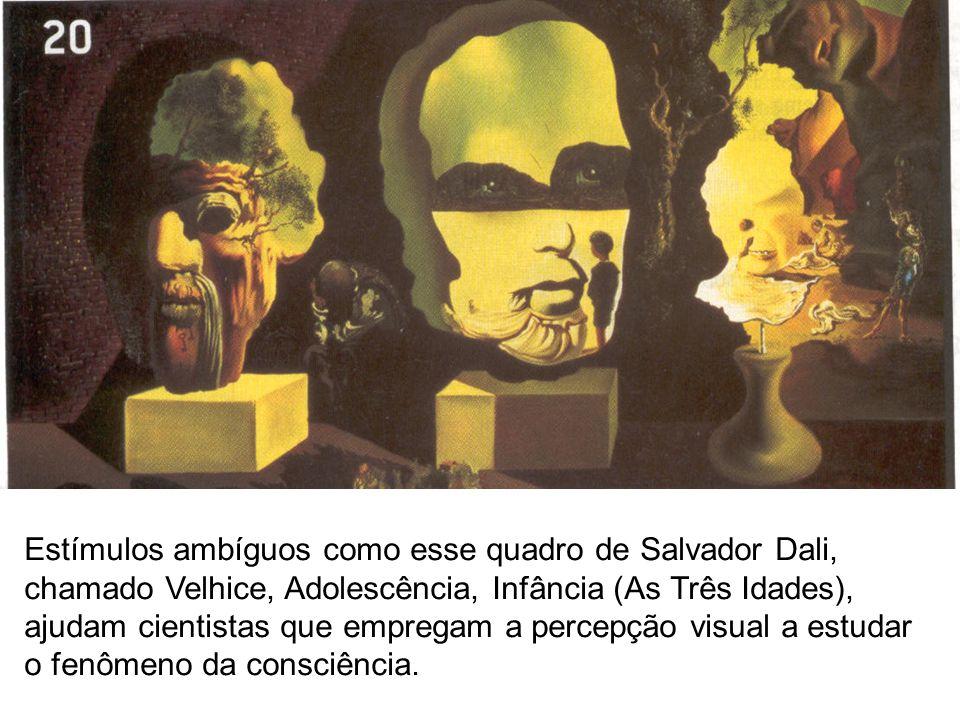 Estímulos ambíguos como esse quadro de Salvador Dali, chamado Velhice, Adolescência, Infância (As Três Idades), ajudam cientistas que empregam a percepção visual a estudar o fenômeno da consciência.