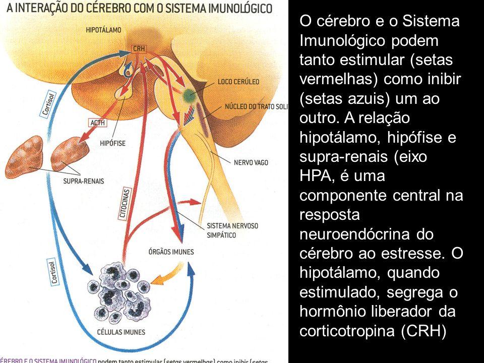 O cérebro e o Sistema Imunológico podem tanto estimular (setas vermelhas) como inibir (setas azuis) um ao outro.