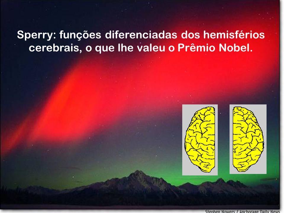 Sperry: funções diferenciadas dos hemisférios cerebrais, o que lhe valeu o Prêmio Nobel.