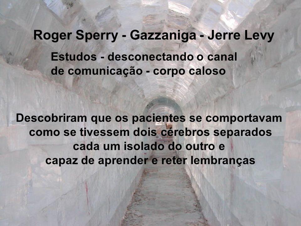 Roger Sperry - Gazzaniga - Jerre Levy