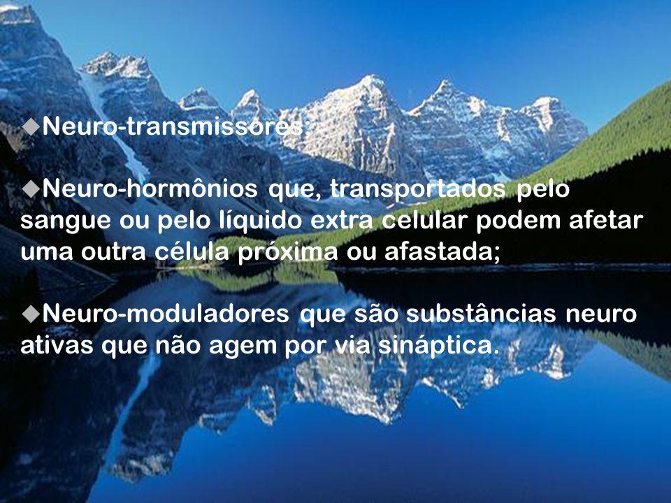 Neuro-transmissores;