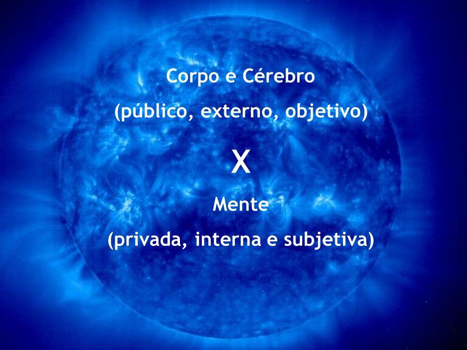 (público, externo, objetivo) (privada, interna e subjetiva)