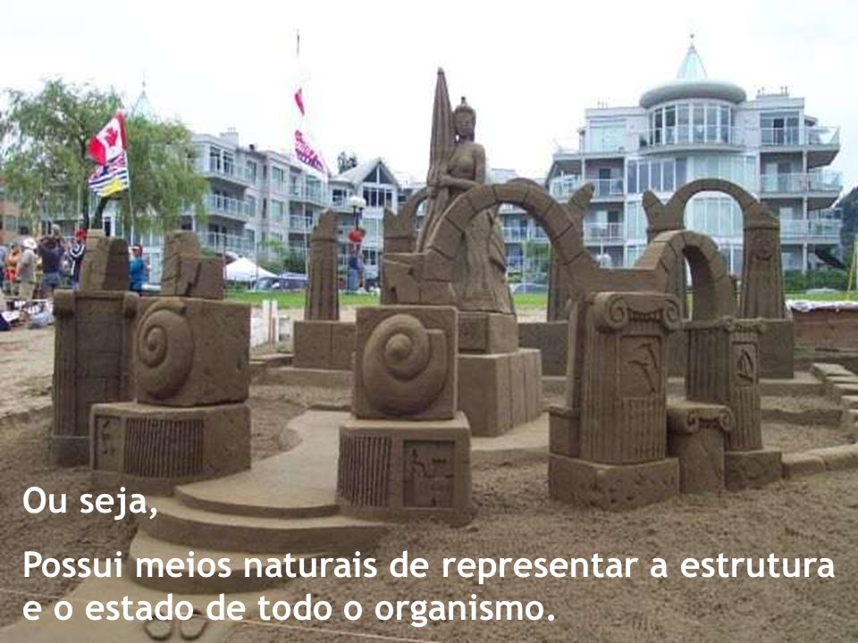 Ou seja, Possui meios naturais de representar a estrutura e o estado de todo o organismo.