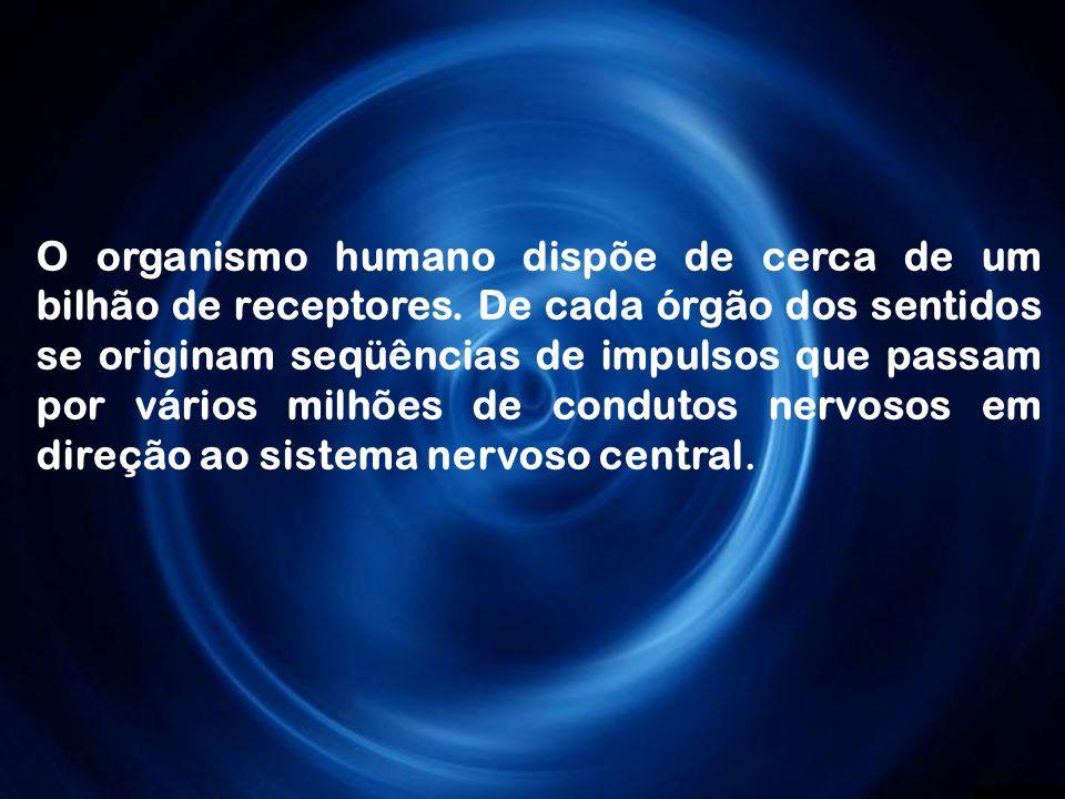 O organismo humano dispõe de cerca de um bilhão de receptores