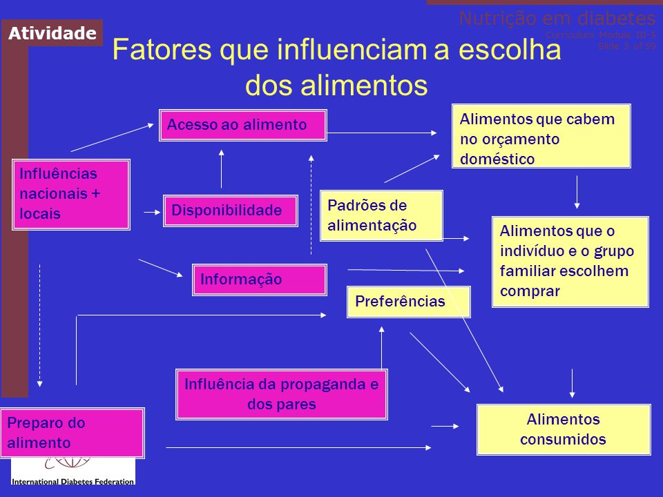 Fatores que influenciam a escolha dos alimentos