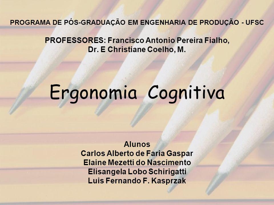PROGRAMA DE PÓS-GRADUAÇÃO EM ENGENHARIA DE PRODUÇÃO - UFSC PROFESSORES: Francisco Antonio Pereira Fialho, Dr.