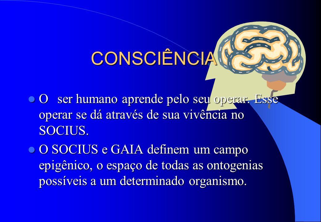 CONSCIÊNCIA O ser humano aprende pelo seu operar. Esse operar se dá através de sua vivência no SOCIUS.