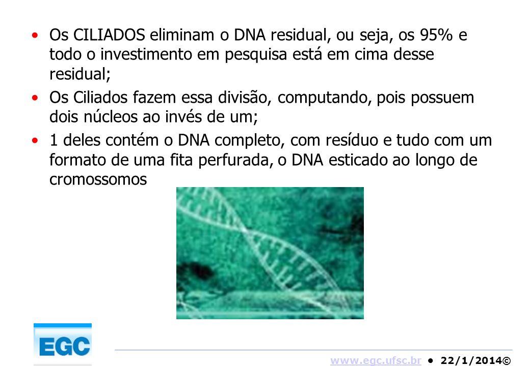Os CILIADOS eliminam o DNA residual, ou seja, os 95% e todo o investimento em pesquisa está em cima desse residual;
