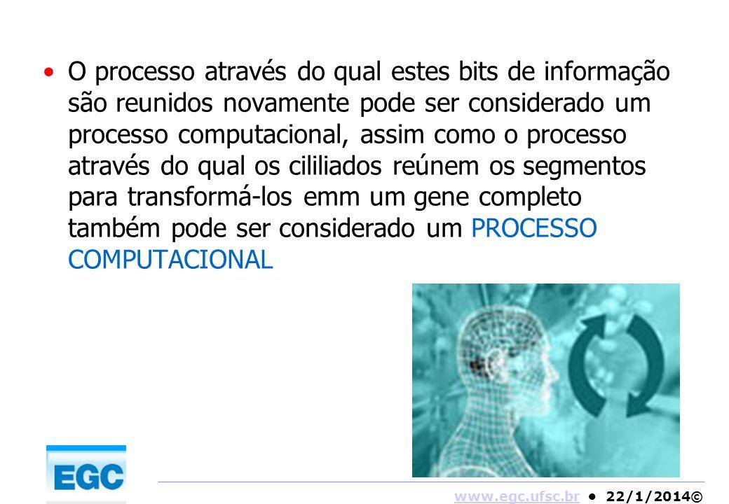 O processo através do qual estes bits de informação são reunidos novamente pode ser considerado um processo computacional, assim como o processo através do qual os cililiados reúnem os segmentos para transformá-los emm um gene completo também pode ser considerado um PROCESSO COMPUTACIONAL