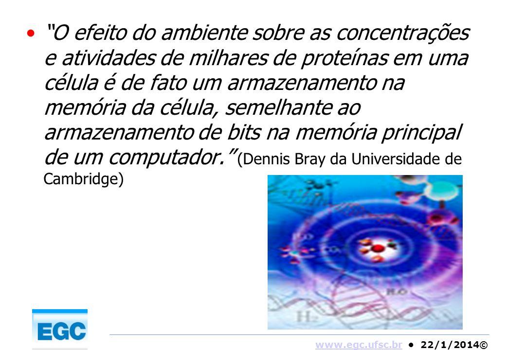 O efeito do ambiente sobre as concentrações e atividades de milhares de proteínas em uma célula é de fato um armazenamento na memória da célula, semelhante ao armazenamento de bits na memória principal de um computador. (Dennis Bray da Universidade de Cambridge)