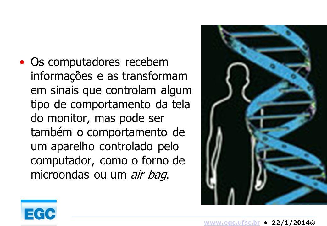 Os computadores recebem informações e as transformam em sinais que controlam algum tipo de comportamento da tela do monitor, mas pode ser também o comportamento de um aparelho controlado pelo computador, como o forno de microondas ou um air bag.