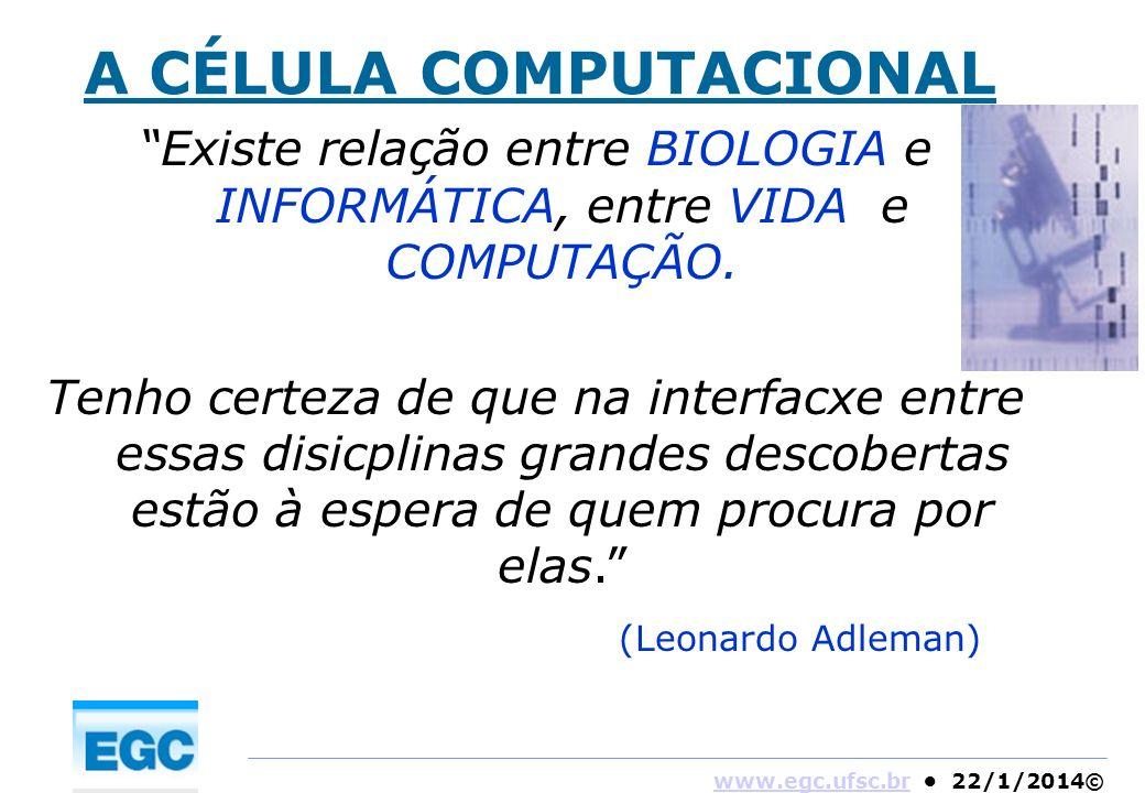 Existe relação entre BIOLOGIA e INFORMÁTICA, entre VIDA e COMPUTAÇÃO.
