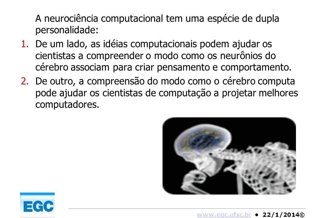 A neurociência computacional tem uma espécie de dupla personalidade: