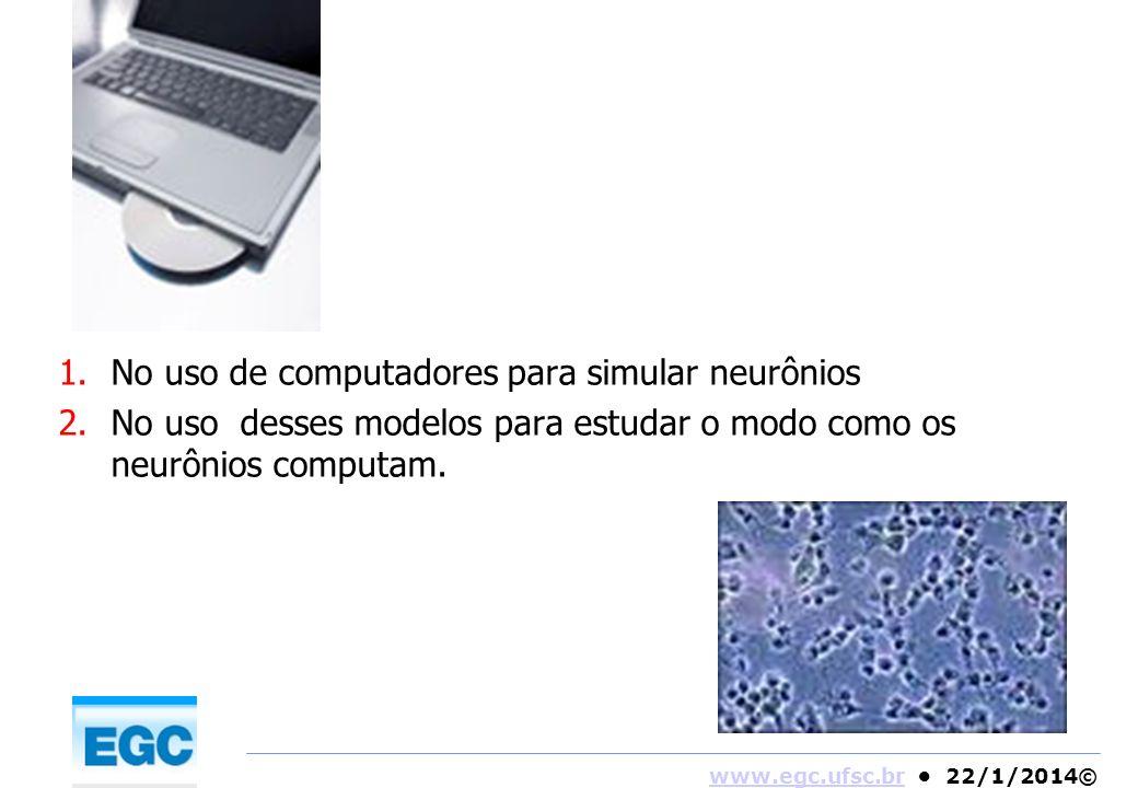No uso de computadores para simular neurônios