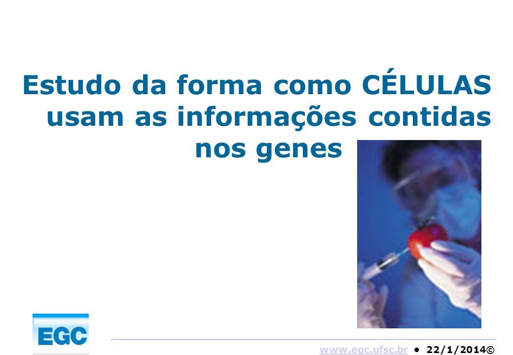 Estudo da forma como CÉLULAS usam as informações contidas nos genes