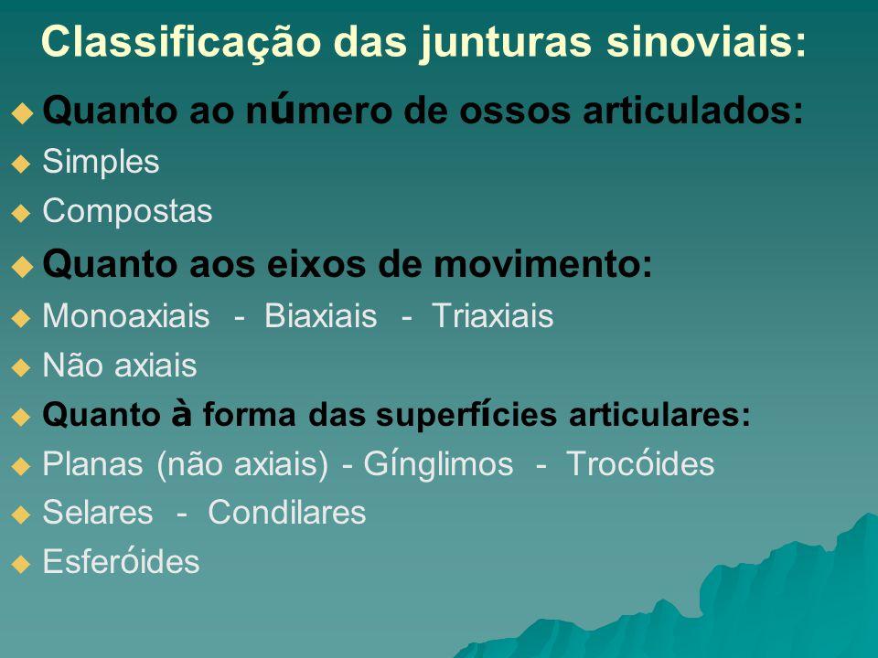 Classificação das junturas sinoviais: