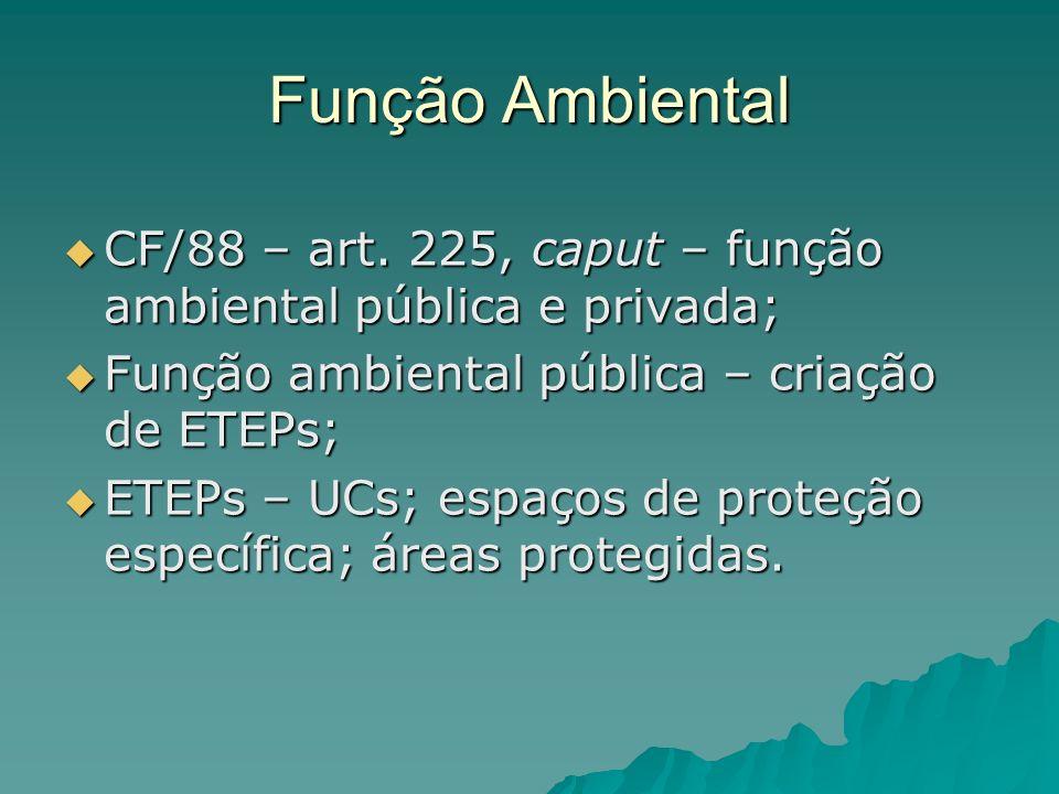Função Ambiental CF/88 – art. 225, caput – função ambiental pública e privada; Função ambiental pública – criação de ETEPs;