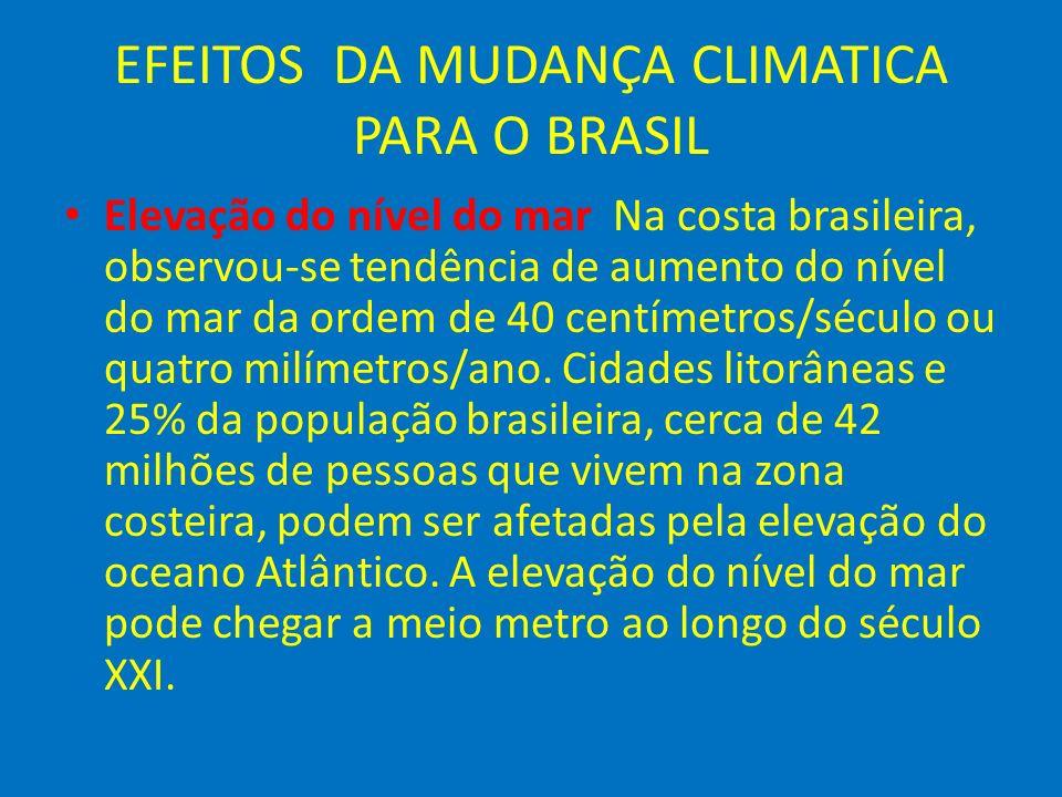 EFEITOS DA MUDANÇA CLIMATICA PARA O BRASIL