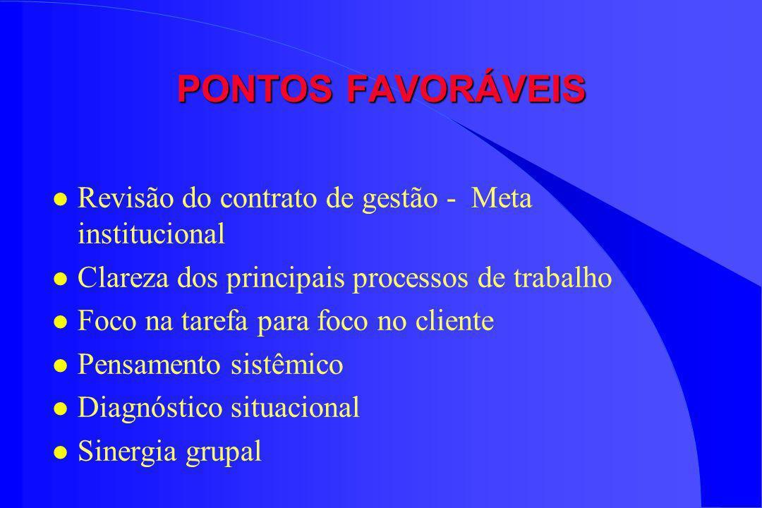 PONTOS FAVORÁVEIS Revisão do contrato de gestão - Meta institucional