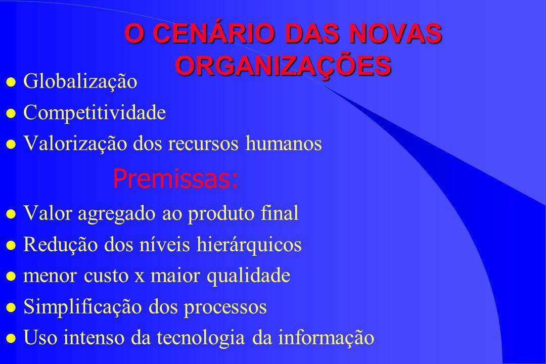 O CENÁRIO DAS NOVAS ORGANIZAÇÕES