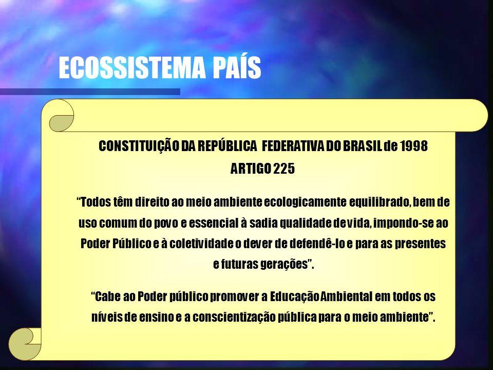 CONSTITUIÇÃO DA REPÚBLICA FEDERATIVA DO BRASIL de 1998