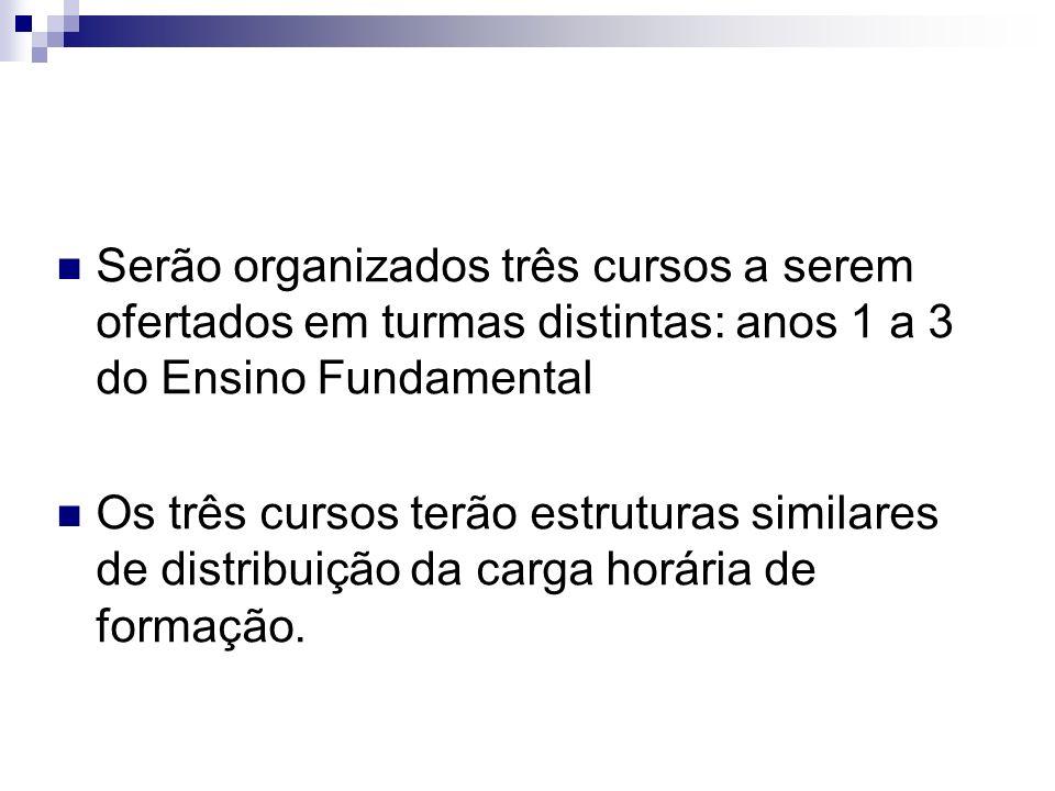 Serão organizados três cursos a serem ofertados em turmas distintas: anos 1 a 3 do Ensino Fundamental.