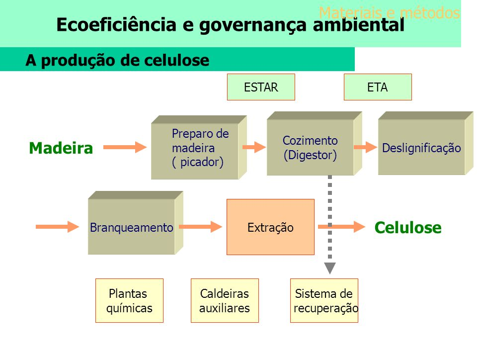 Materiais e métodos A produção de celulose Madeira Celulose