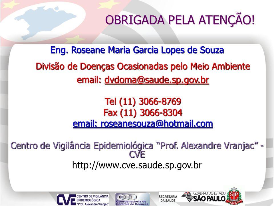 OBRIGADA PELA ATENÇÃO! Eng. Roseane Maria Garcia Lopes de Souza