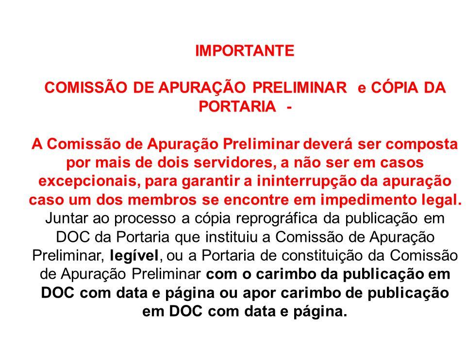 COMISSÃO DE APURAÇÃO PRELIMINAR e CÓPIA DA PORTARIA -