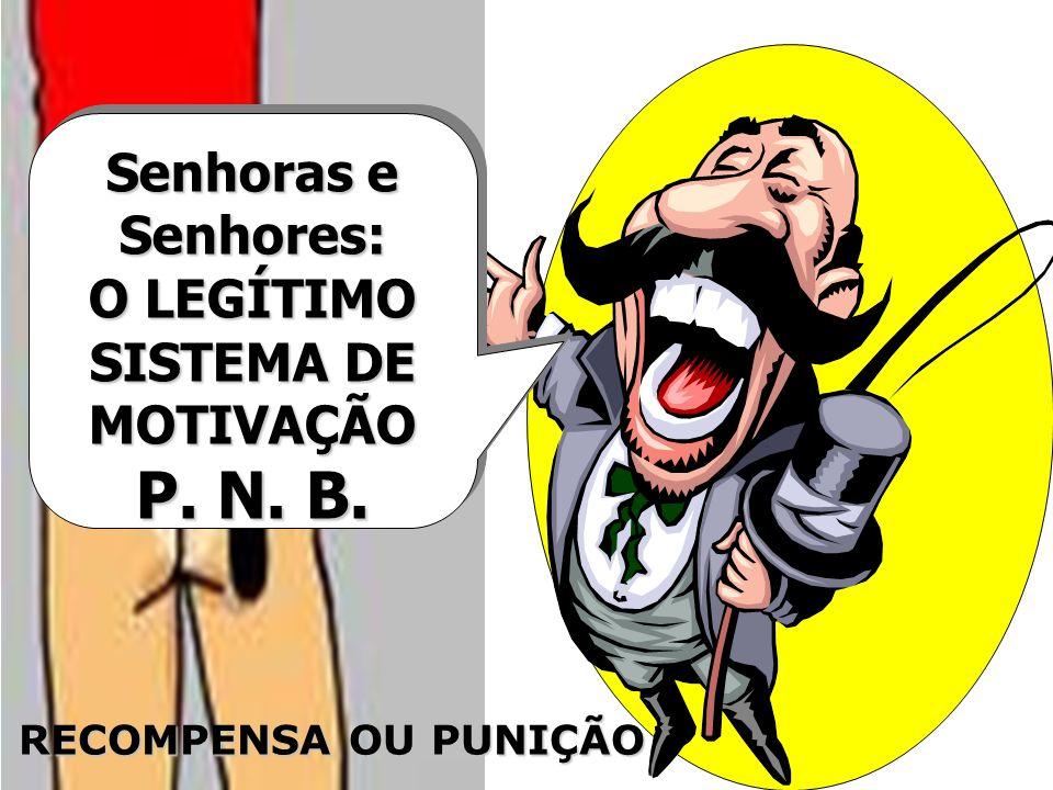 SISTEMA DE MOTIVAÇÃO P. N. B.