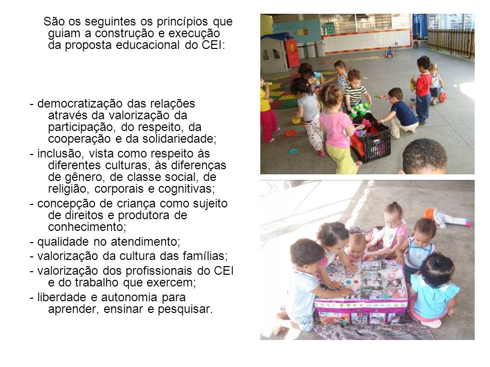 São os seguintes os princípios que guiam a construção e execução da proposta educacional do CEI: