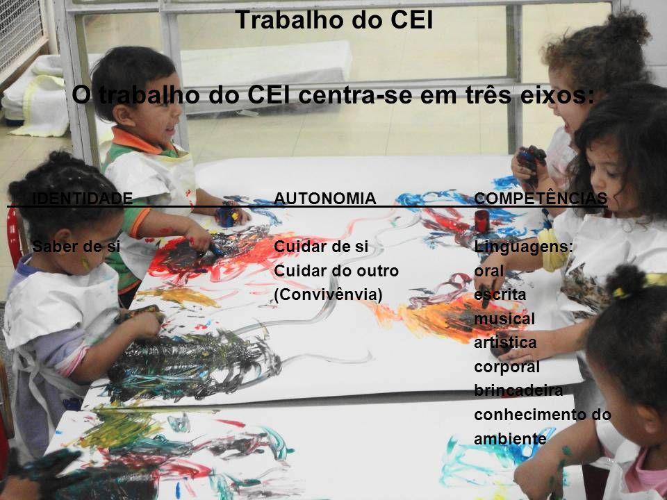 O trabalho do CEI centra-se em três eixos: