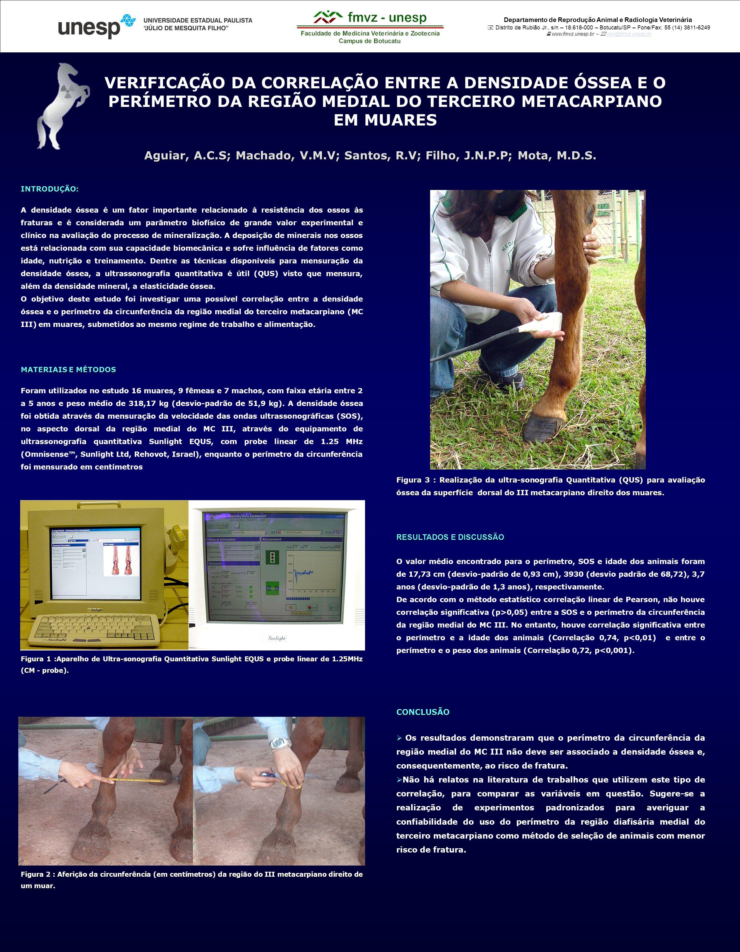 Departamento de Reprodução Animal e Radiologia Veterinária