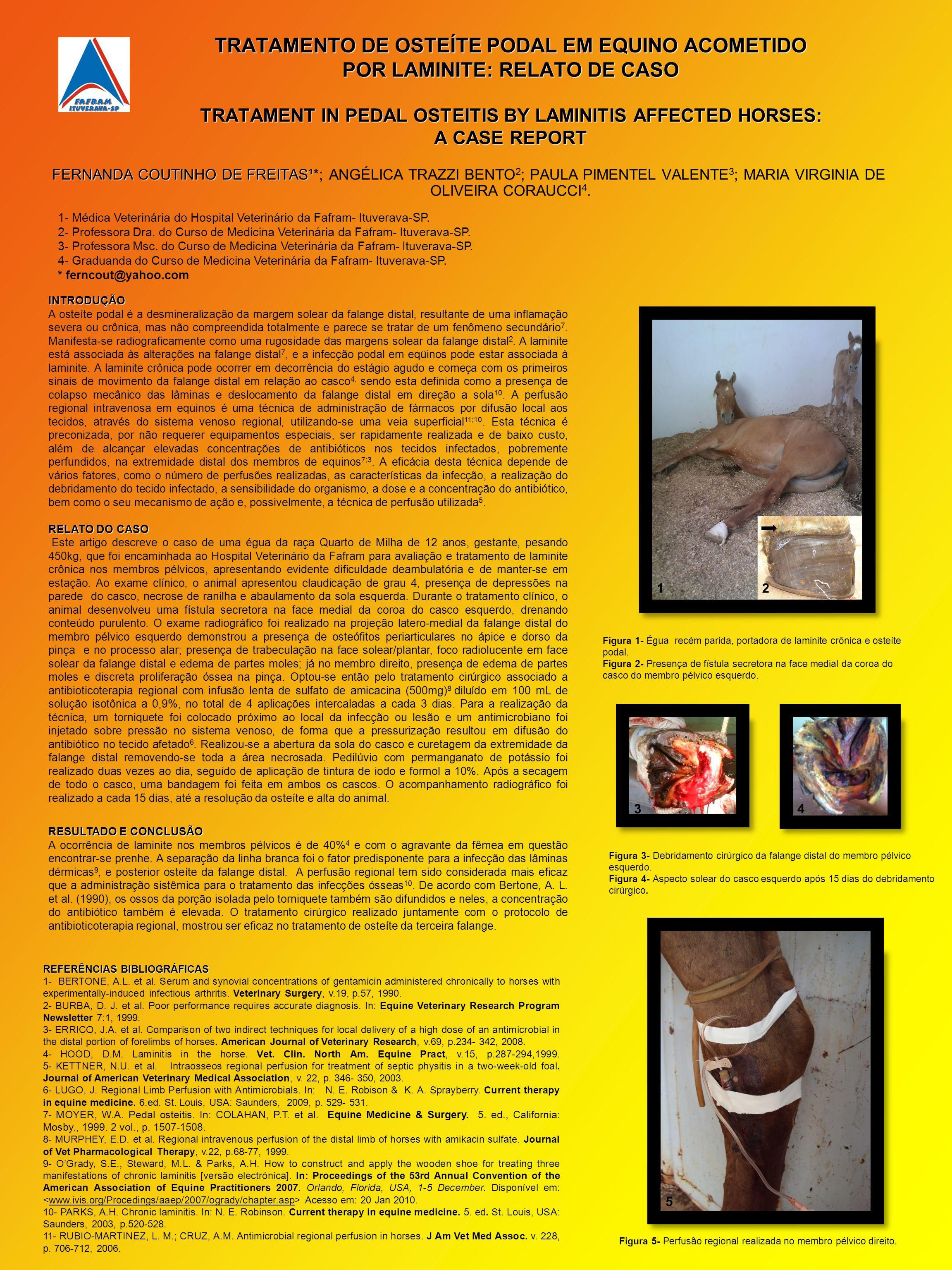 TRATAMENTO DE OSTEÍTE PODAL EM EQUINO ACOMETIDO POR LAMINITE: RELATO DE CASO TRATAMENT IN PEDAL OSTEITIS BY LAMINITIS AFFECTED HORSES: A CASE REPORT