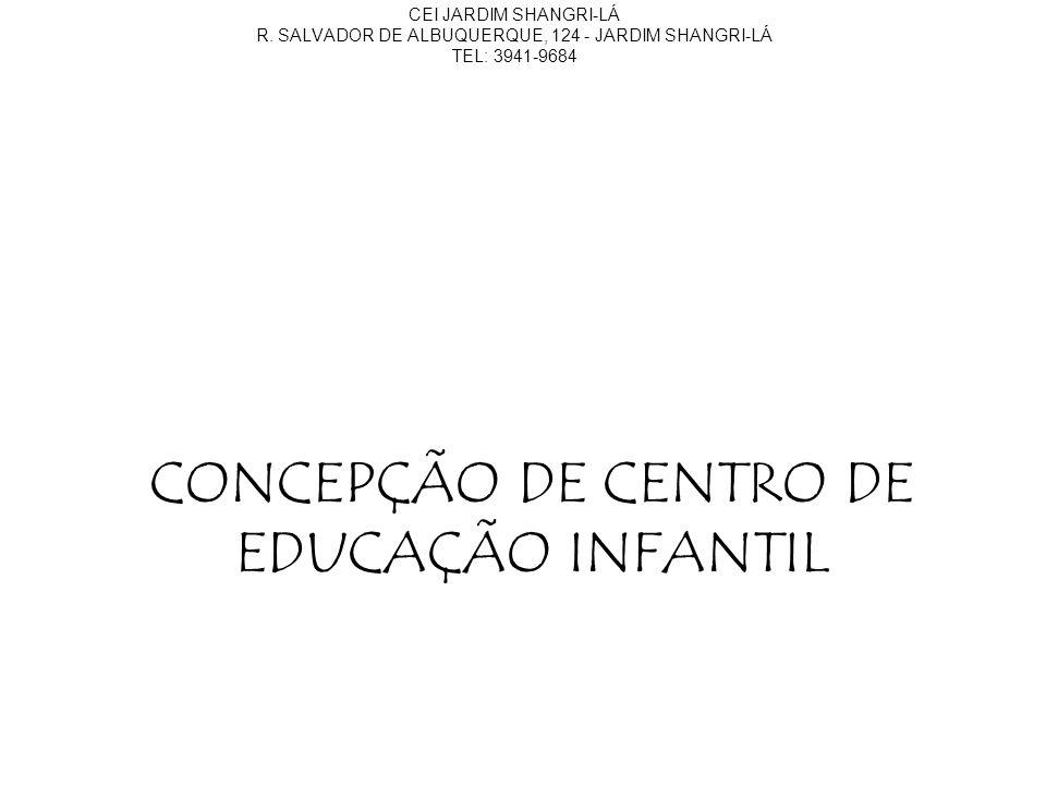 CONCEPÇÃO DE CENTRO DE EDUCAÇÃO INFANTIL