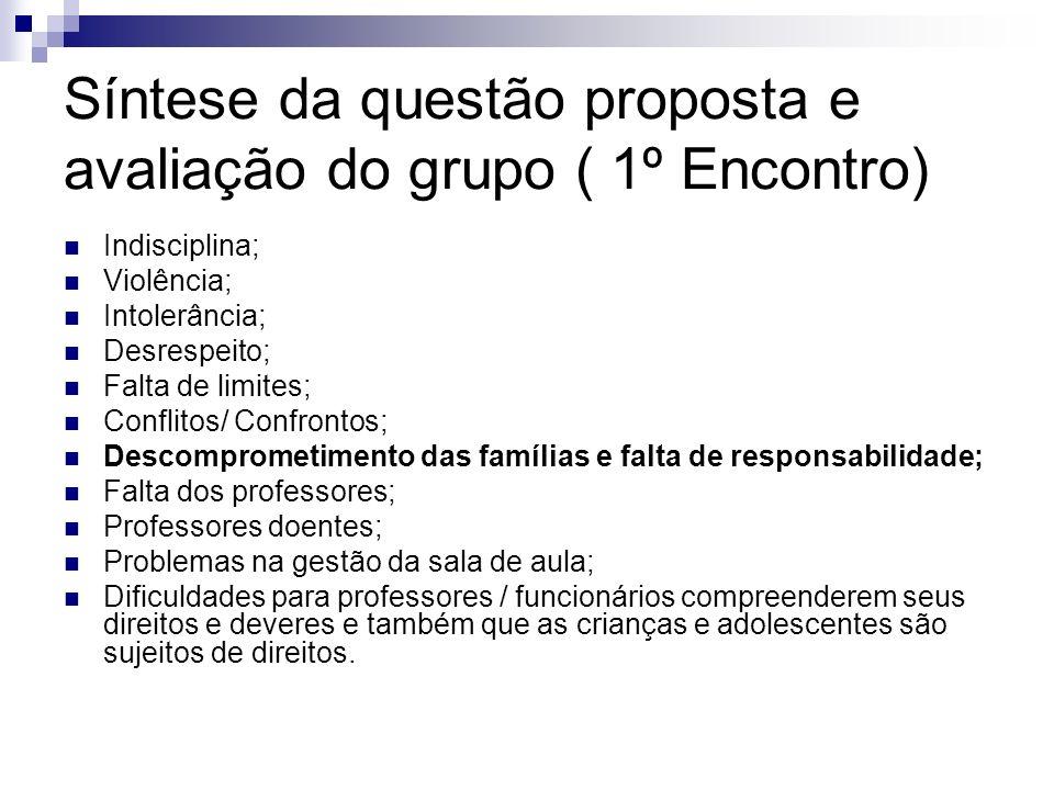 Síntese da questão proposta e avaliação do grupo ( 1º Encontro)